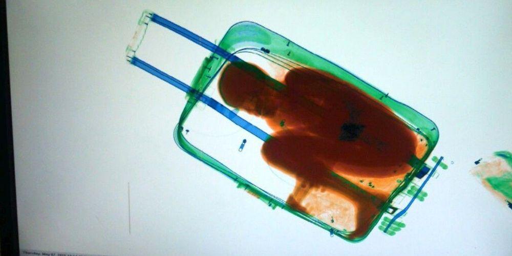Immigration: procès de l'homme dont l'enfant était caché dans une valise