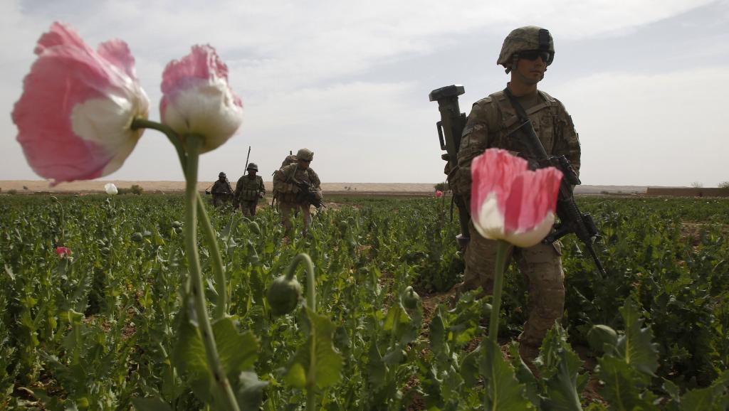 La lutte contre lopium en Afghanistan est un échec