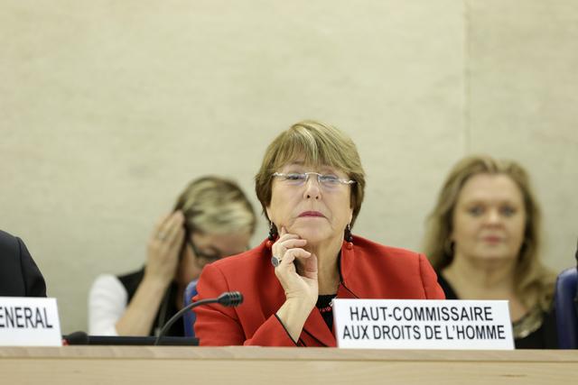 Pour la Haut-Commissaire aux droits de l'homme, «les États ont le devoir de respecter les droits des islamistes, de leurs femmes et de leurs enfants»