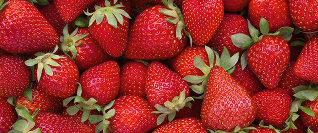 Lot-et-Garonne: une nouvelle affaire de «francisation de fruits étrangers»