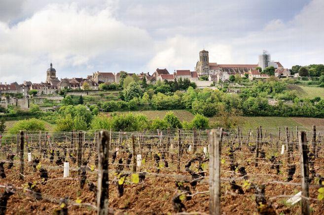 Des habitants de Vézelay lancent un appel pour que chaque village de l'Union européenne accueille deux migrants