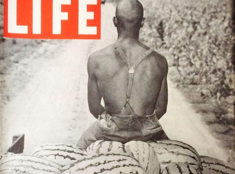 Comment la pastèque est tombée dans les filets du racisme