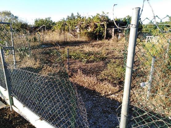 Montpellier : cinquième razzia dans les Jardins familiaux, les Roms pointés du doigt