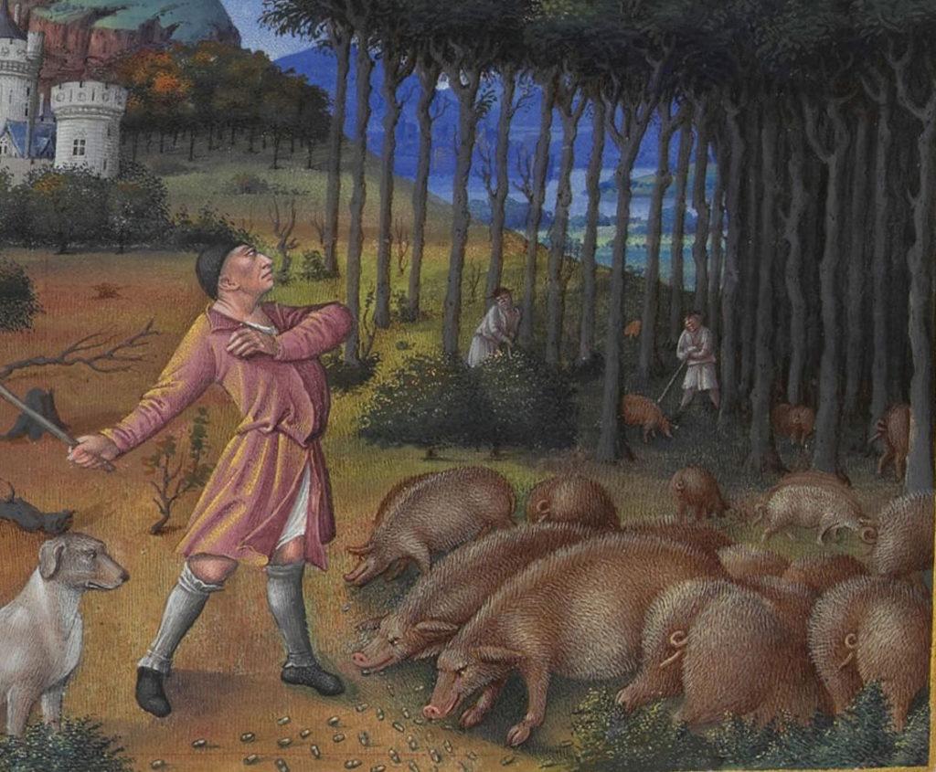 10 clichés totalement faux sur le Moyen Âge
