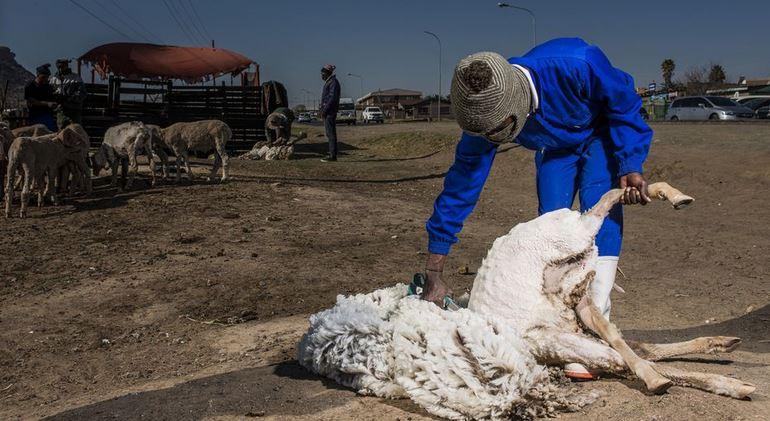 Lesotho : comment un homme d'affaires chinois s'est accaparé l'économie de tout un peuple