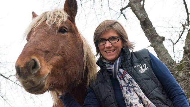 Orschwihr (68) : les animaux face à la justice, après le coq Maurice, Sésame le cheval attend son procès