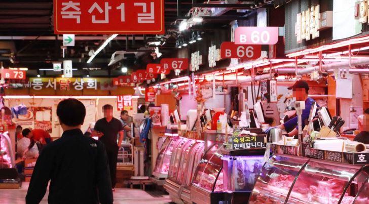 Corée du Nord : catastrophique épidémie de peste porcine africaine