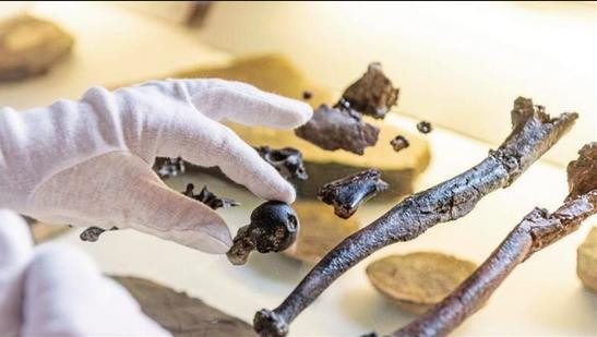Allemagne : en Bavière, une découverte archéologique bouleverse l'histoire de nos origines