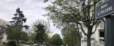 Rennes. Trois mineurs incarcérés pour avoir frappé un sexagénaire avec une batte de base-ball